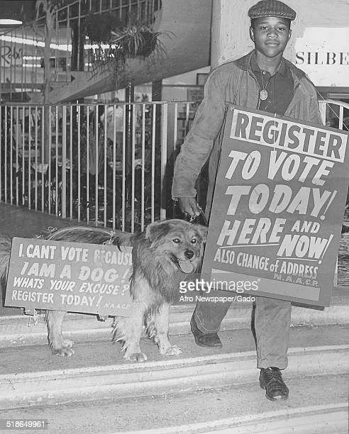 AfricanAmerican man holding a dog and carrying comical signs urging citizens to vote March 28 1964