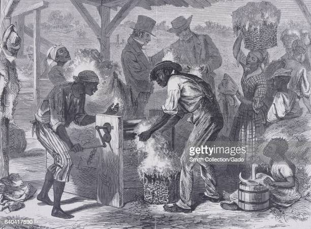 AfricanAmerican slaves working on Whitney's cotton gin as white men observe behind them 1869 From the New York Public Library