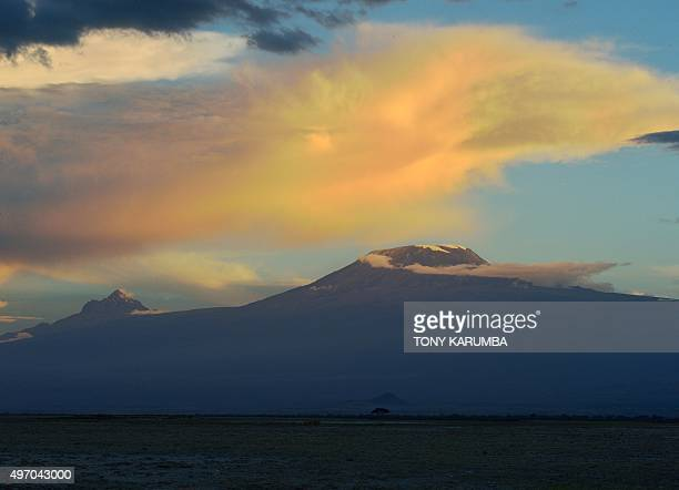 Africa's highest mountain Kilimanjaro stands in the dying light of dusk over the rolling plains of the Amboseli national reserve November 13 2015 The...
