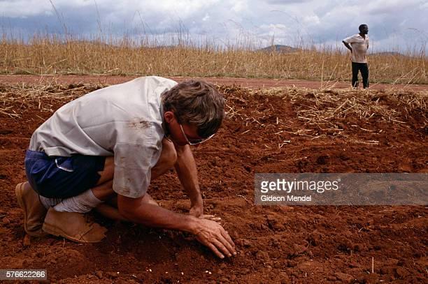 Afrikaner Farmer Planting Peanuts
