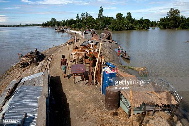 GAIDANDHA DHAKA BANGLADESH After being washed out and having lost their houses by the floodwater which broken through one side of this dam people...