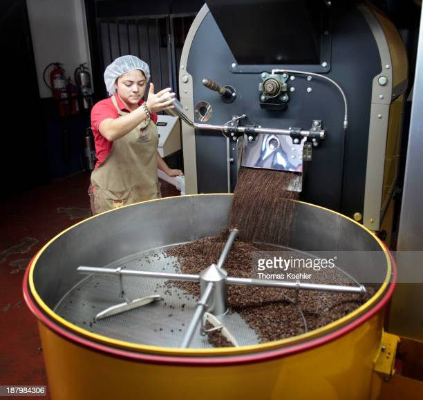 After roasting the coffee beans are cooled down at the coffee plantation Espiritu Santo the plantation is member of the coffee cooperative...