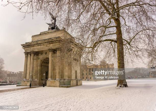 after the fall ii - buckingham palace stock pictures, royalty-free photos & images