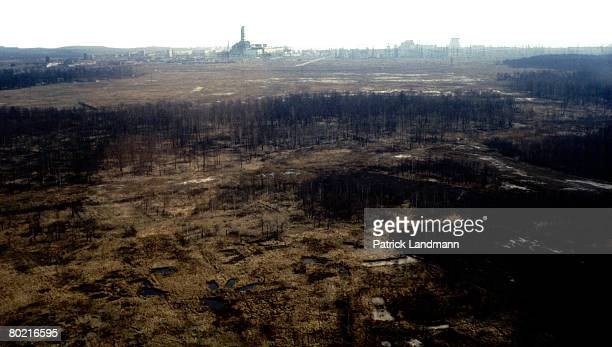 After the most critical forest wildfire within the exclusion zone of Chernobyl, which took place in May 1992, 270 hectares were affected, seen here...