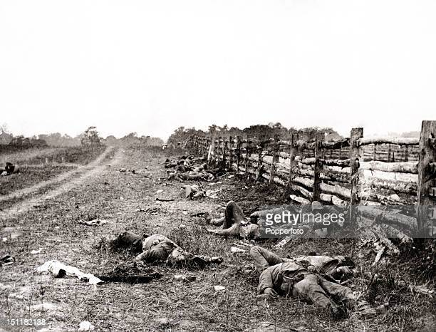 Aftermath of the Battle of Antietam during the American Civil War on 17th September 1862. The bodies of the dead, which are strewn thickly beside the...