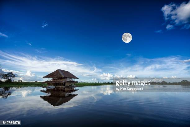 Afternoon and reflections of the Amazon river