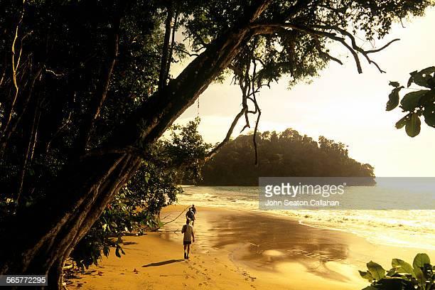 afternoon hiking - costa rica stock-fotos und bilder