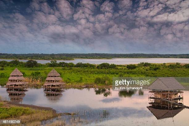 afternoon on the amazon river - iquitos stock pictures, royalty-free photos & images