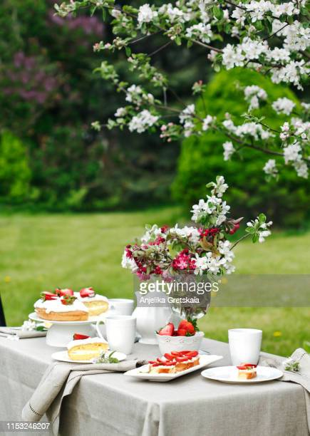 afternoon tea, cakes and bruschetta with ricotta and strawberry in the garden. - afternoon tea stock pictures, royalty-free photos & images