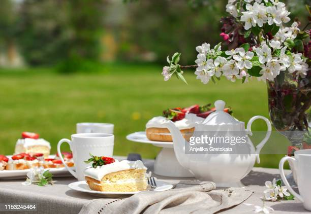 afternoon tea in the garden. garden party - afternoon tea stock pictures, royalty-free photos & images
