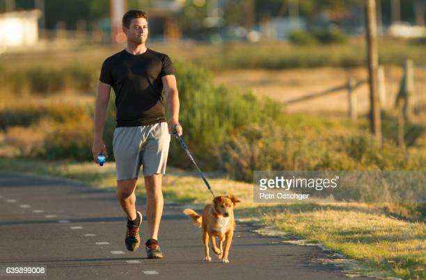 afternoon walk with dog. - twilight stock pictures, royalty-free photos & images