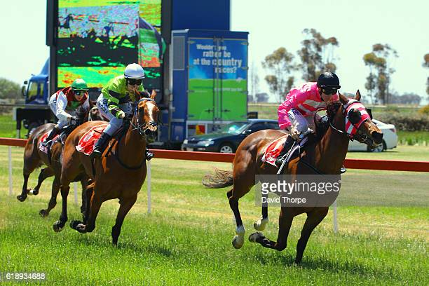 Aftershave ridden by Harry Coffey wins TAC Plan Now To Get Home Later Maiden Plate on October 29 2016 in Wycheproof Australia