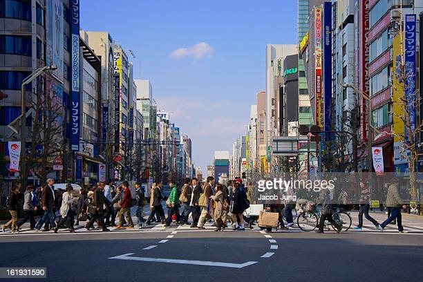CONTENT] Against a backdrop of colorful highrise buildings on a sunny day a crowd of people cross Chuo Street in Akihabara Tokyo's main district for...