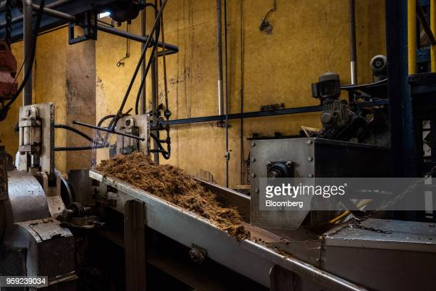 Agave fibers move down a conveyor belt at the Becle SAB Jose Cuervo distillery in the town of Tequila Jalisco state Mexico on Thursday May 3 2018...