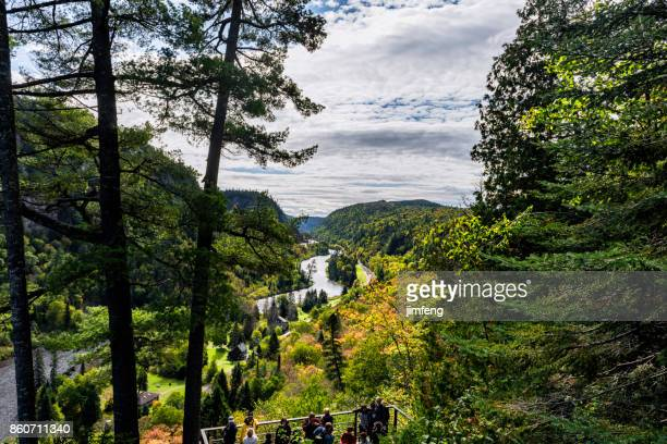 agawa canyon tour train - canyon stock pictures, royalty-free photos & images