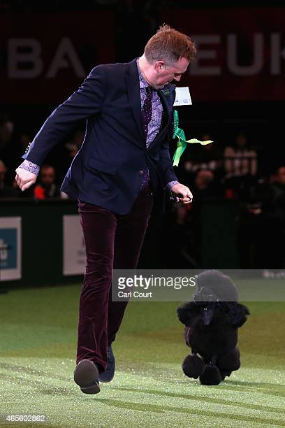Age Gjetnes and Tuppen the minature Poodle during the Best in Show category of Crufts 2015 on the fourth and final day of Crufts dog show at the...
