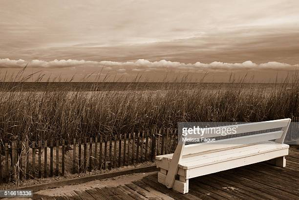 Aged View Sepia Beach/Boardwalk Landscape Photograph