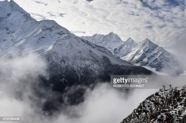 Agence FrancePresse reporter Ammu Kannampilly and Nepalese guide Pasang Sherpa stand on a ridge over a valley leading north into the Khumbu region as...