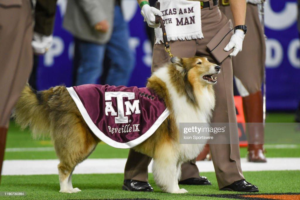 COLLEGE FOOTBALL: DEC 27 Texas Bowl- Oklahoma State v Texas A&M : News Photo