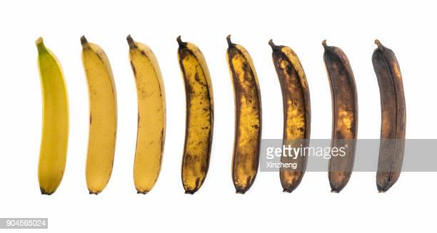 aging process of banana on white background - rot stock pictures, royalty-free photos & images