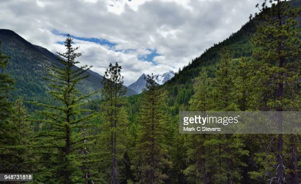 agnes mountain and other peaks of the ptarmigan crest - pacific crest trail stock pictures, royalty-free photos & images