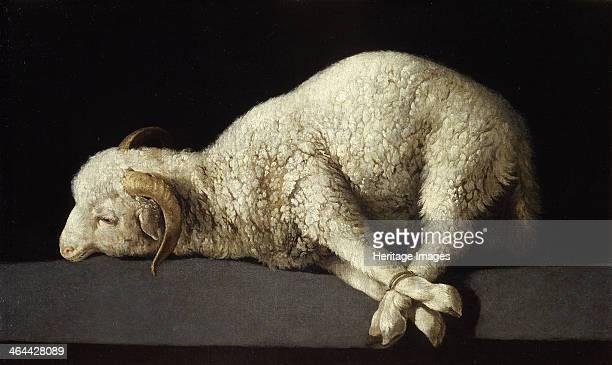 Agnus Dei 16351640 Found in the collection of the Museo del Prado Madrid