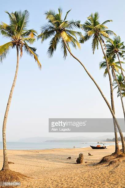 agonda beach,goa,india. - goa stock pictures, royalty-free photos & images