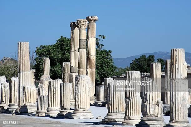 agora columns, ephesus antique city, izmir turkey - ephesus stock pictures, royalty-free photos & images