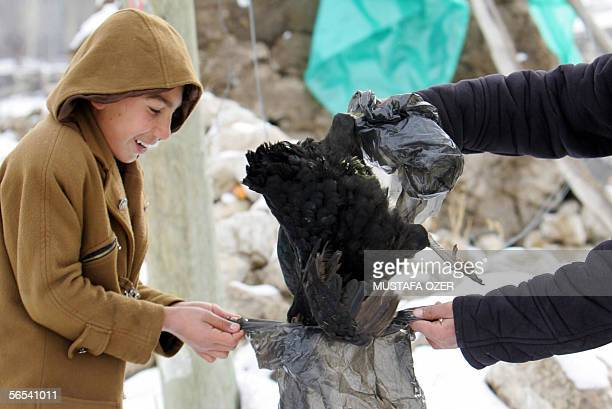 A twelveyearold Murat Ozer and 16yearold Hakan Samur put a sick chicken in to a bag to burry it in Telceker village of Dogubeyazit eastern Turkey 08...