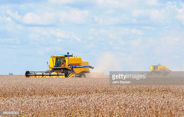 agribusiness - mato grosso state stock pictures, royalty-free photos & images