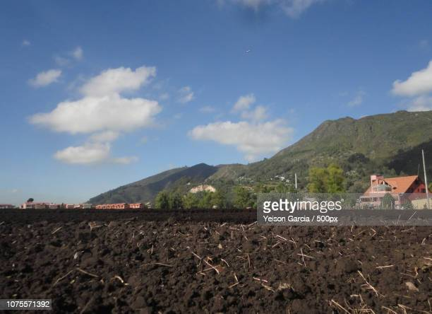 Agricultura Cota Cundinamarca