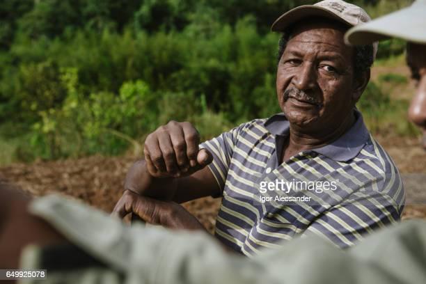 cooperativa agrícola, brasil - trabalhador rural - fotografias e filmes do acervo