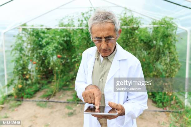 Agricultural engineer using tablet in greenhouse