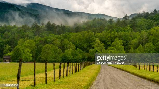 agricultural fields and mountains seen from cadescove road, great smoky mountains national park, usa - tennessee stock pictures, royalty-free photos & images