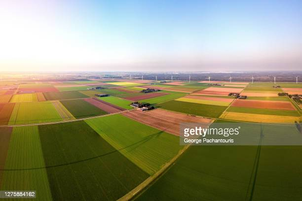agricultural fields and wind turbines - netherlands stock pictures, royalty-free photos & images
