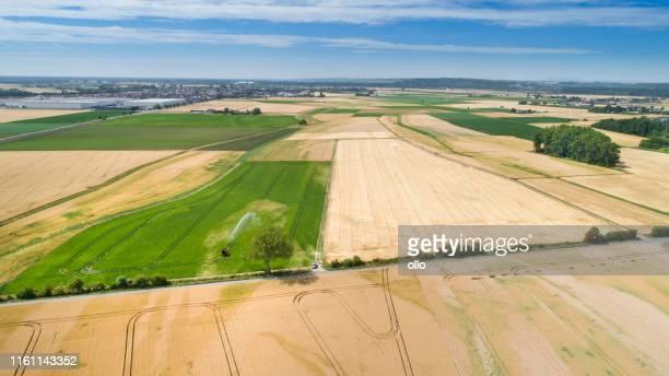 agricultural fields - german landscape - terra coltivata foto e immagini stock