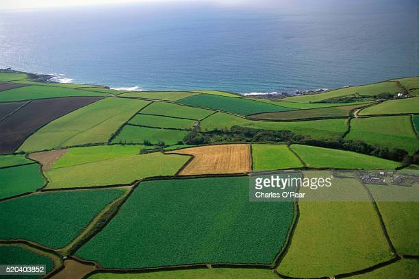 agricultural fields in cornwall - penzance stock pictures, royalty-free photos & images