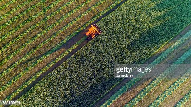 agricultural harvesting at the last light of day, aerial view. - tractor stock pictures, royalty-free photos & images