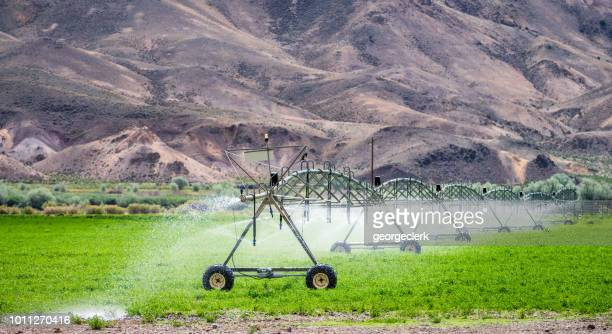 agricultural irrigation of a field in dry countryside - sprinkler system stock pictures, royalty-free photos & images