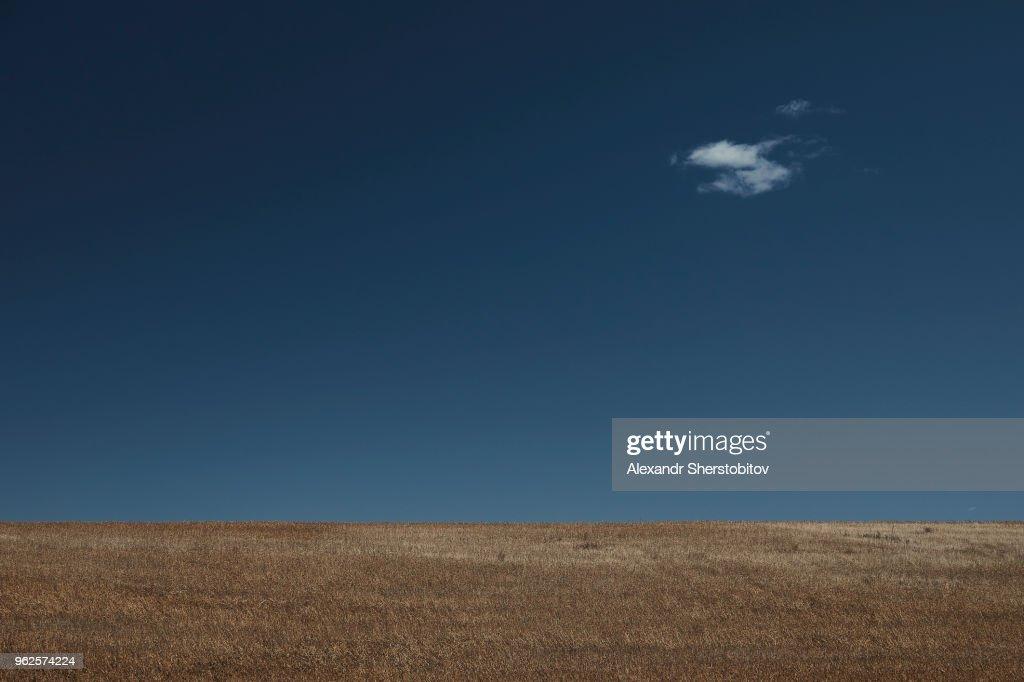 Agricultural landscape against blue sky : Stock Photo