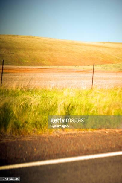 Agricultural landscape along road edge