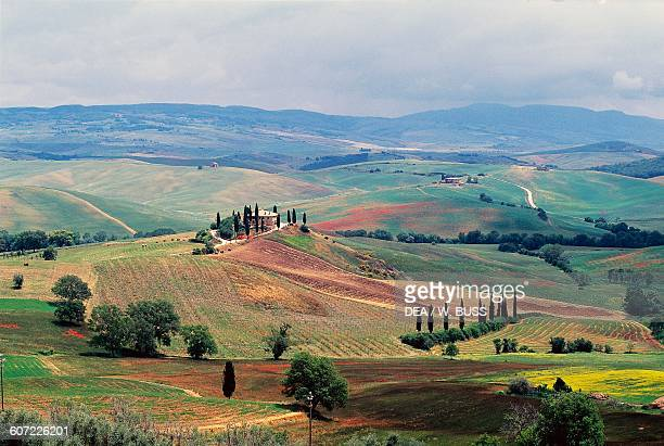 Agricultural landscape near San Quirico d'Orcia, Val d'Orcia , Tuscany, Italy.