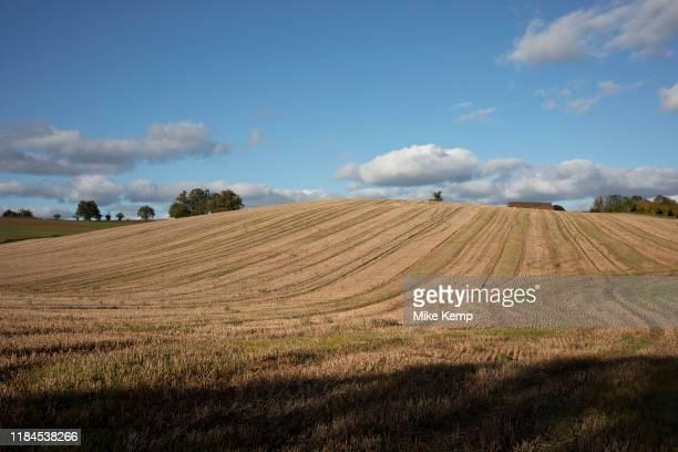 Agricultural landscape of harvested elds in Shrawley United Kingdom