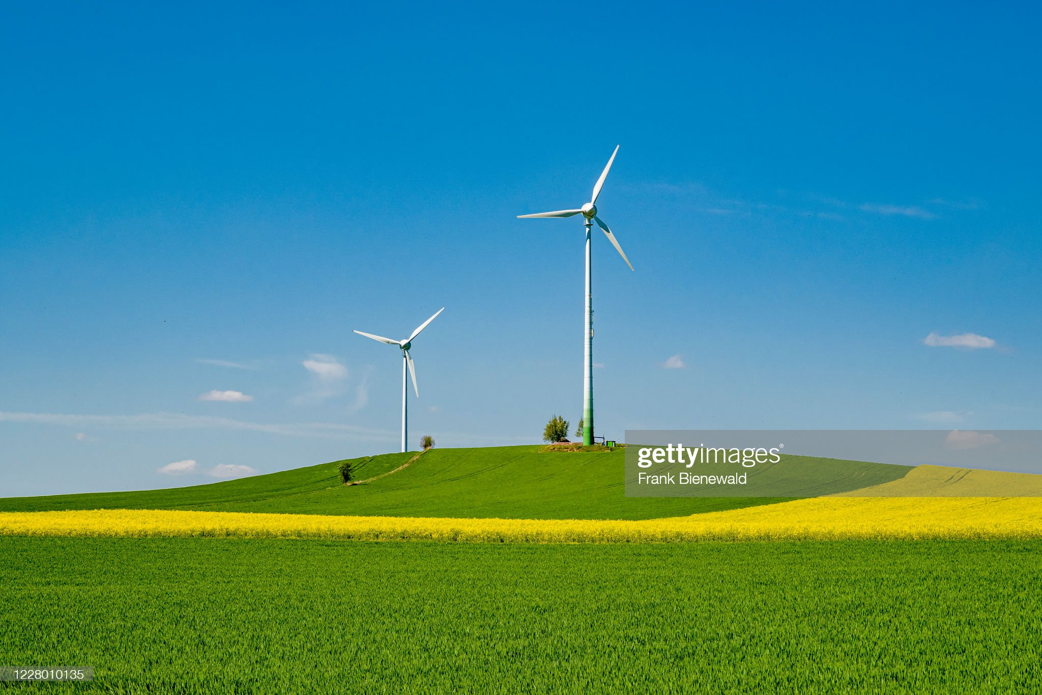 Agricultural landscape of green field with two windmills (wind turbines)
