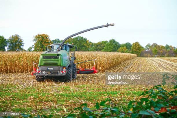 machine agricole à la récolte de maïs - land brandebourg photos et images de collection