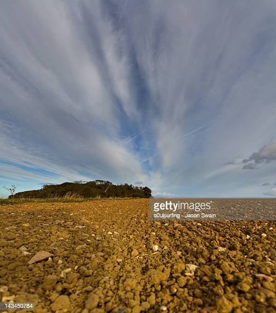 agricultural scene and crazy altocumulus skies - s0ulsurfing stock pictures, royalty-free photos & images