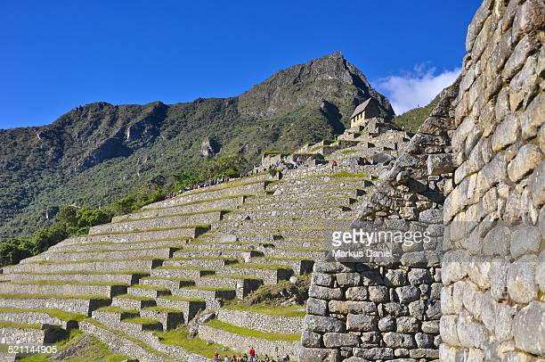 Agricultural Sector and Machu Picchu Mountain