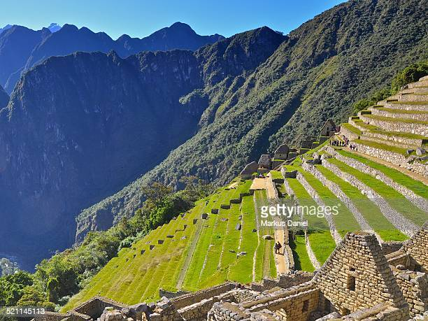 Agricultural sector terraces in Machu Picchu