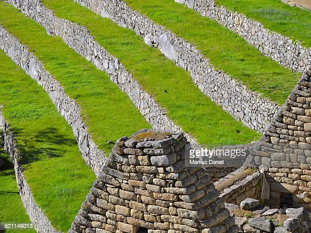 "agricultural sector terraces in machu picchu - ""markus daniel"" stock pictures, royalty-free photos & images"