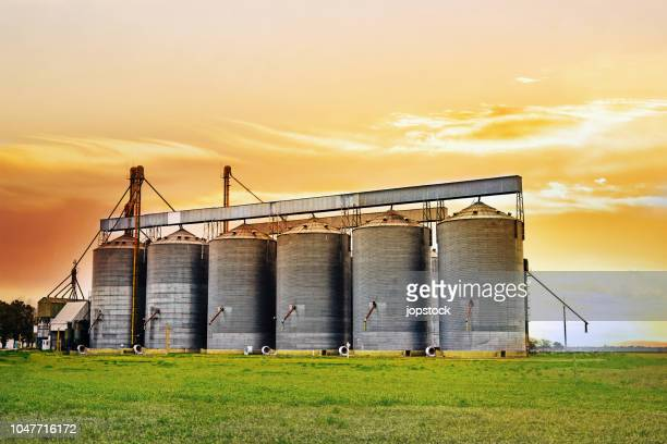 agricultural silos at sunset - silo stock photos and pictures